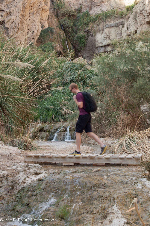 Ein Gedi, Masada, Dead Sea-5624
