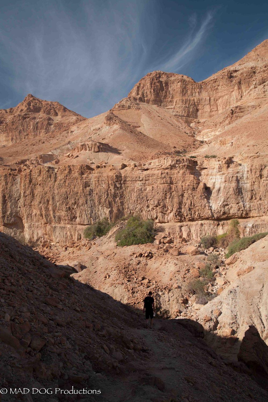 Ein Gedi, Masada, Dead Sea-5662