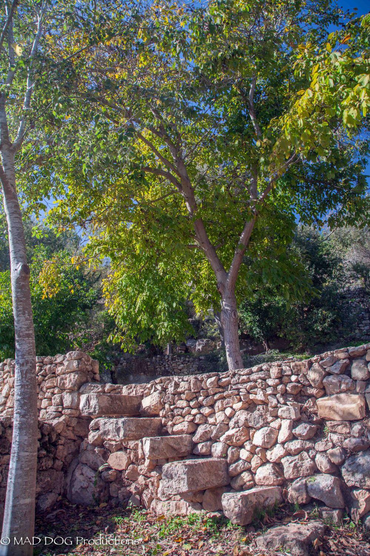 Jerusalem Hike-5961