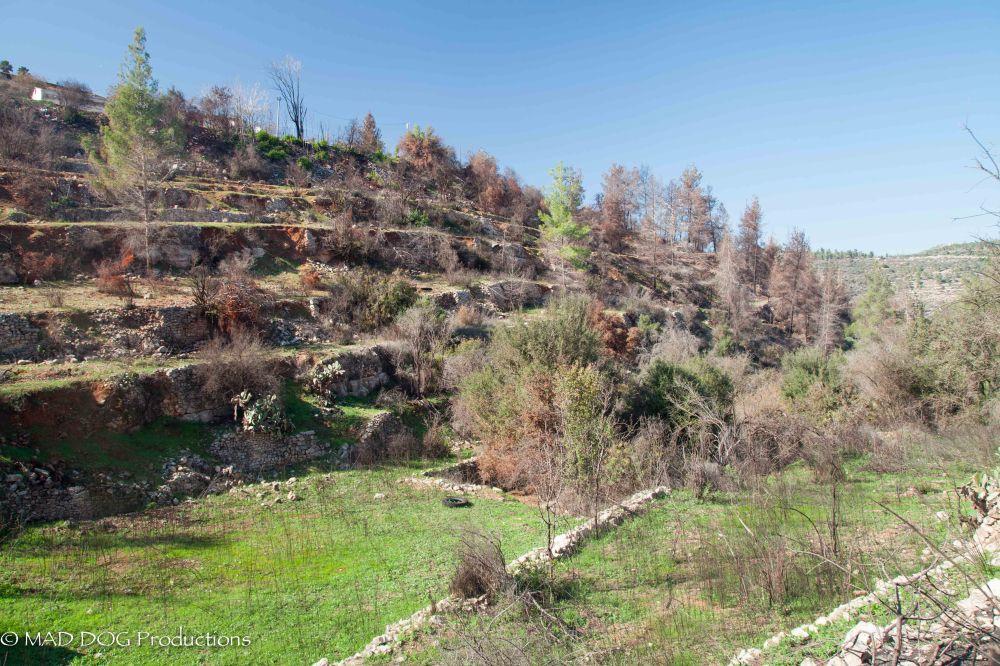 Jerusalem Hike-5965