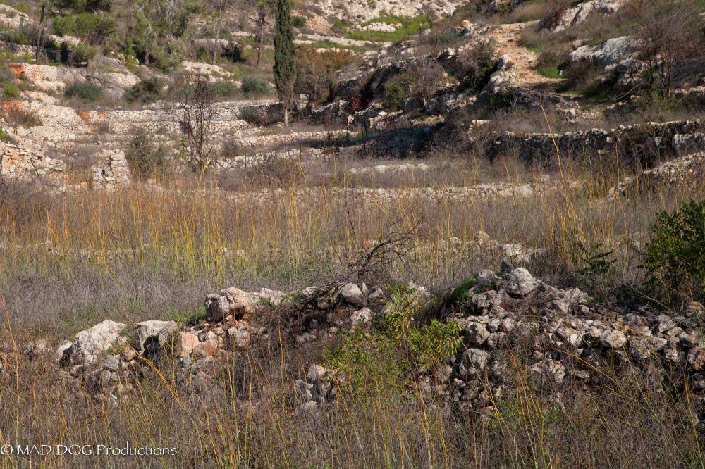 Jerusalem Hike-5969