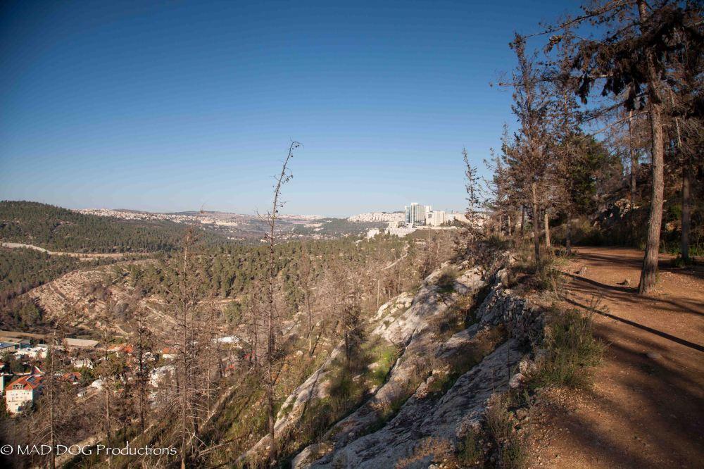 Jerusalem Hike-5978