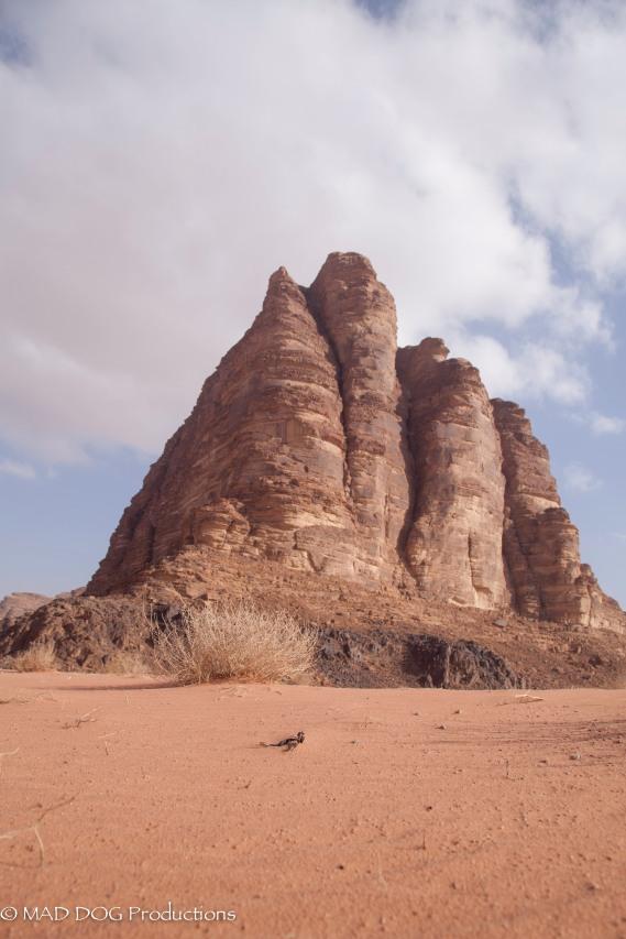 petra wadi musa-0630