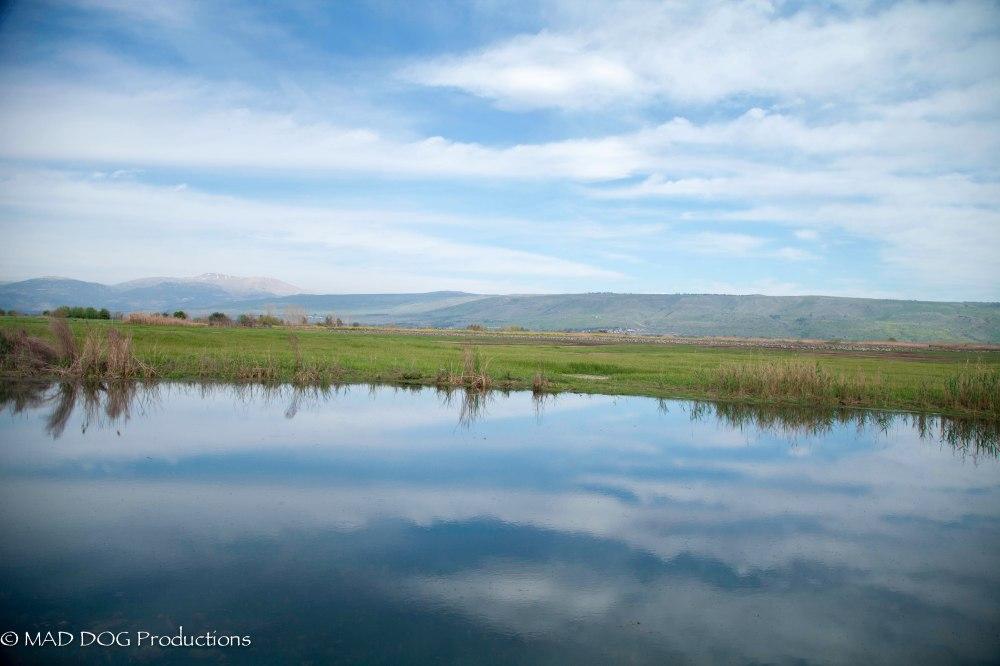 Akko, Sea of Galilee-1324