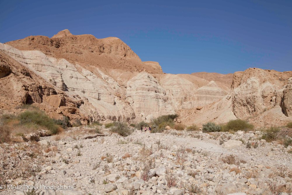 Wadi Trip Weekend 1-2889