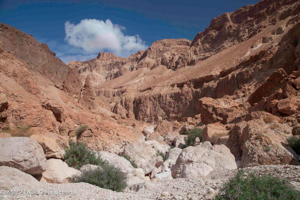 Wadi Weekend 2-3120