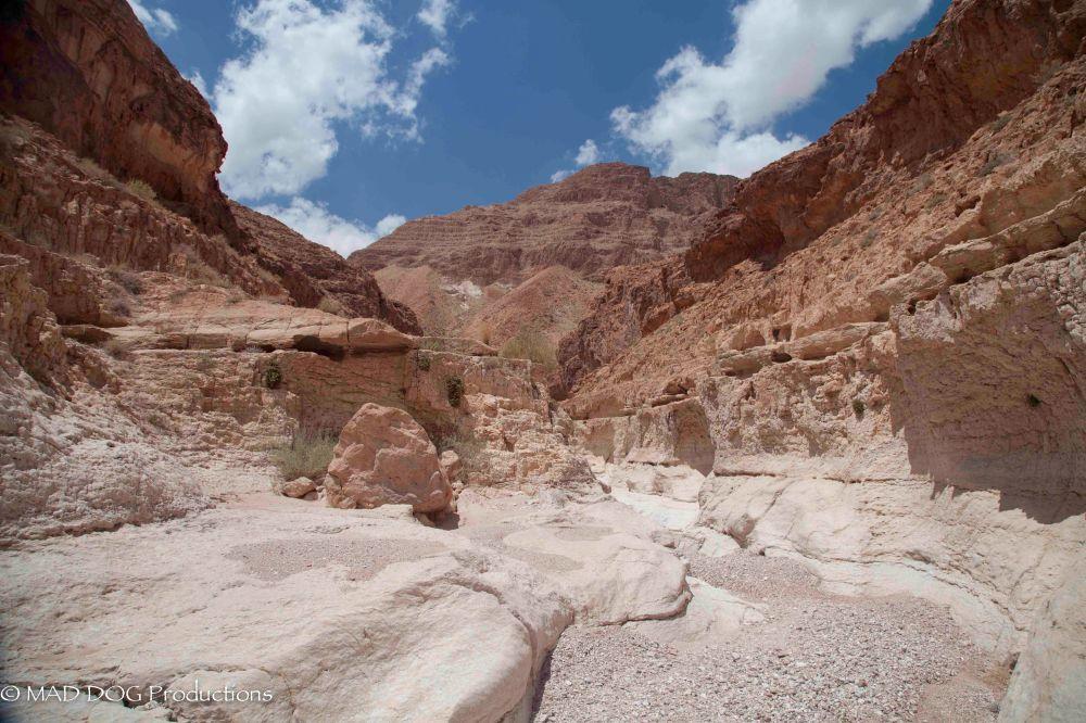 Wadi Weekend 2-3184