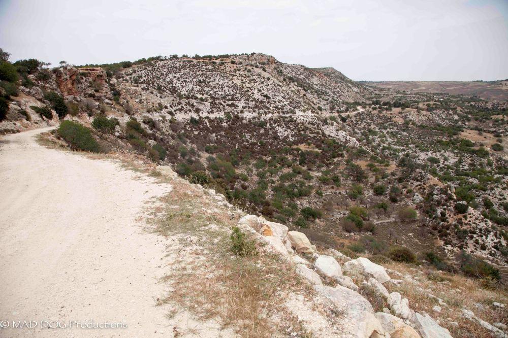 Cyprus 1-3668
