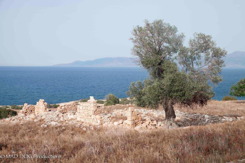 Cyprus 1-3758