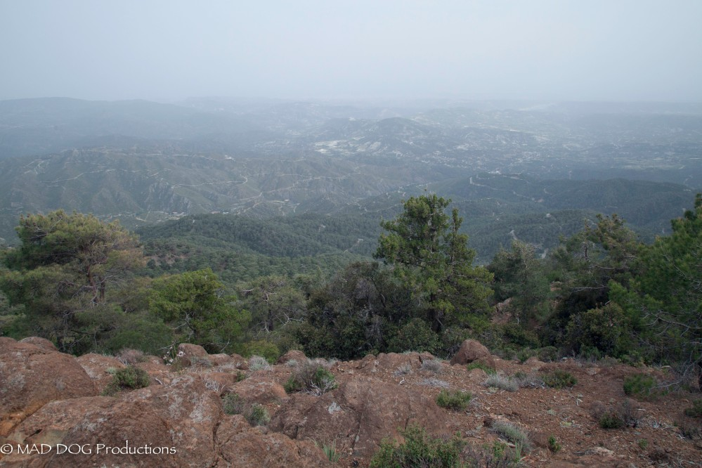 Cyprus Mountains-4216