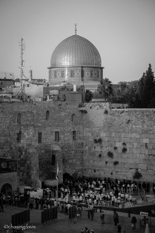israel-davis-12