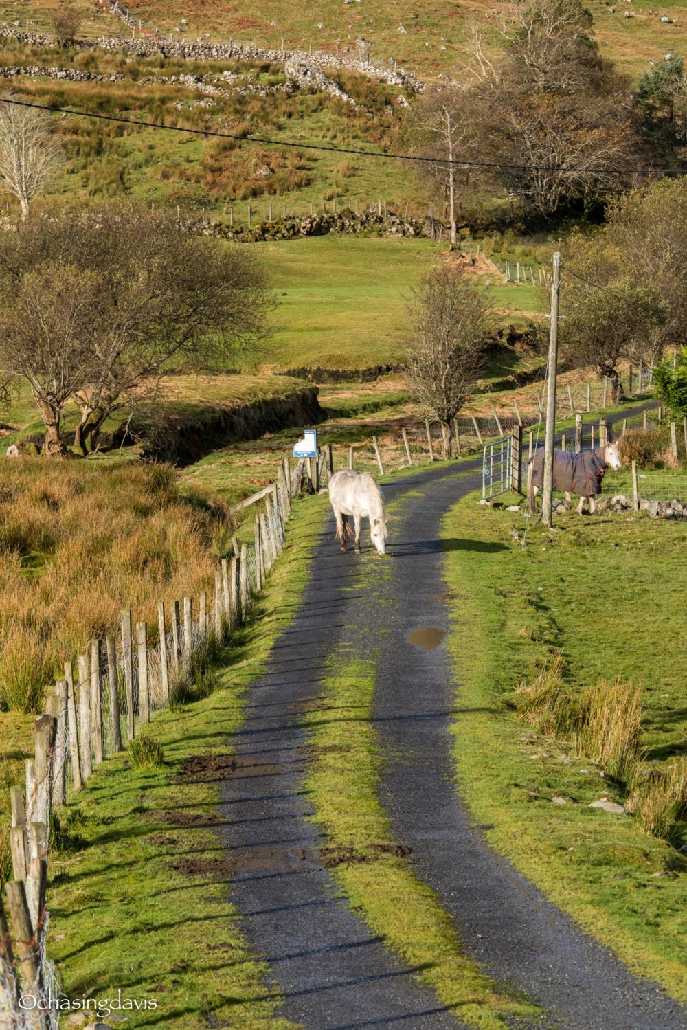 Ireland Hikes-22
