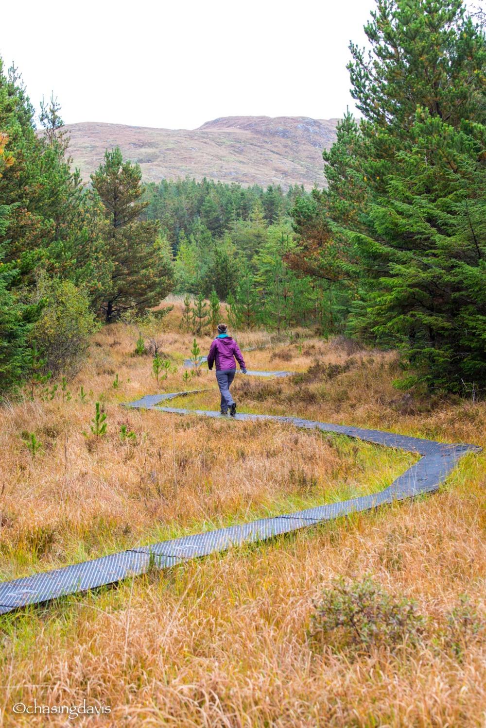 Ireland Hikes-23